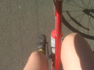 An attempt to get a photo of legs while biking.